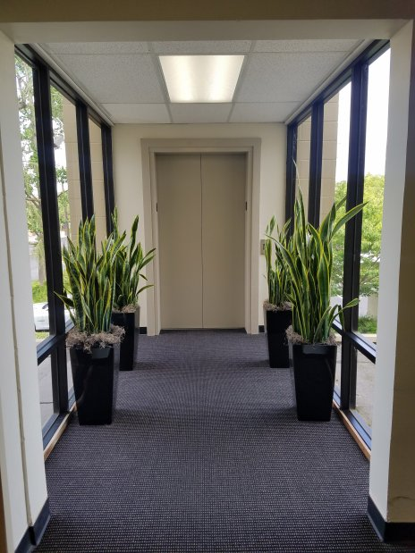 Sacramento Suboxone Clinic